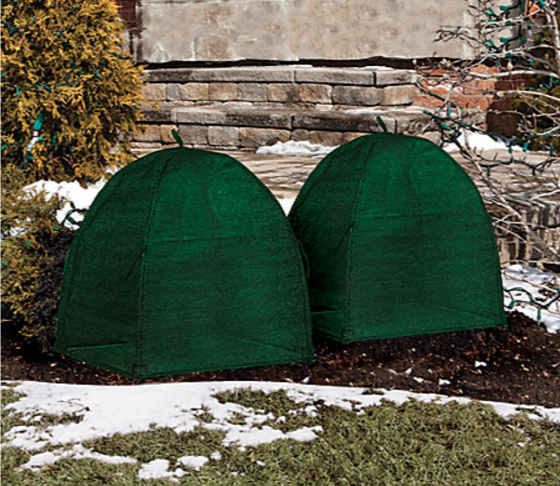 shrub covers for winter, home depot, home depot canada, cambie street, protect my plants in the winter